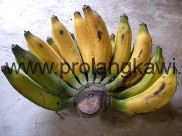Бананны в Малайзии